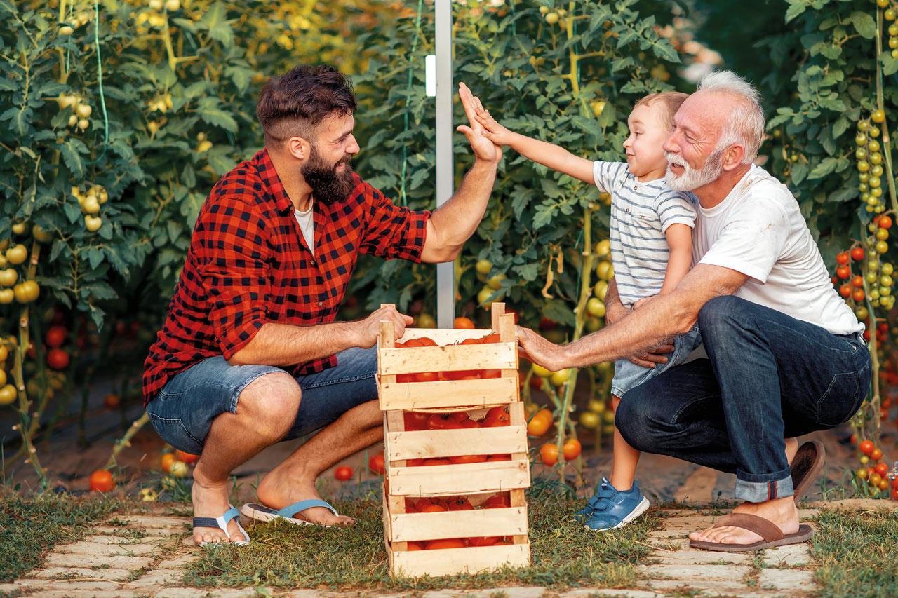 Jak zachować rodzinę w orbicie firmy rodzinnej